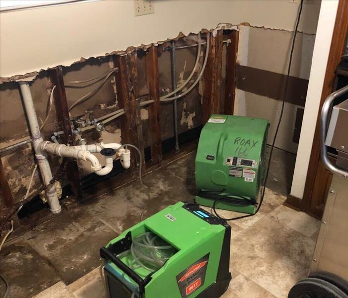 Mold Remediation in Richmond, TX After