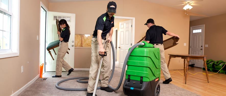 Dewalt, TX cleaning services